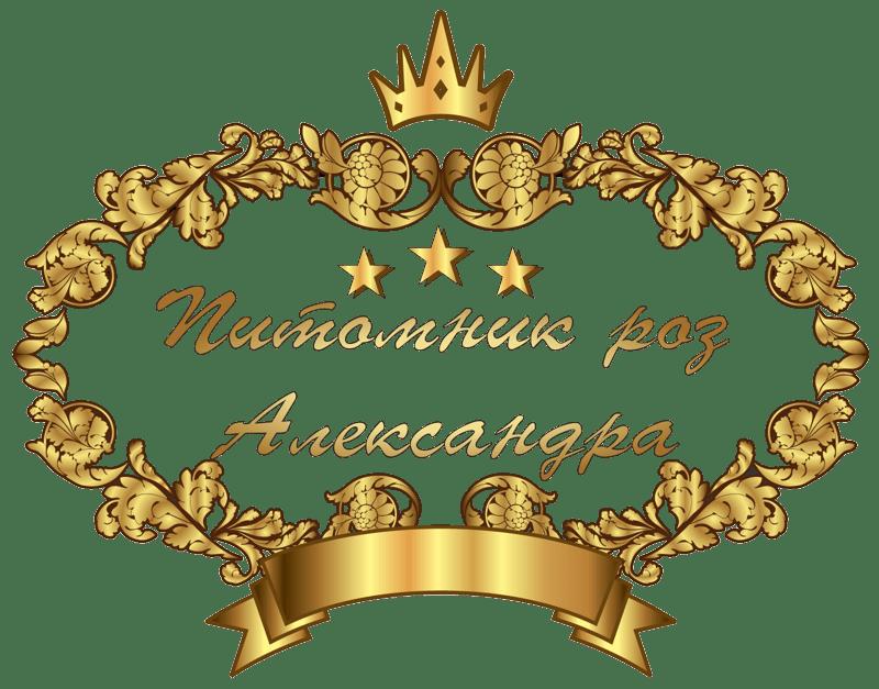 korona 800 Саженцы роз Кущевская Краснодарский край